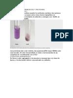 Reacciones de Aminoacios y Proteinas
