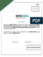 res-cfe-310-16-anexo-iv-59233e950eceb
