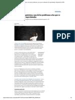 Los Falsos Diagnósticos, Uno de Los Problemas a Los Que Se Enfrentan Los Superdotados _ España _ EL PAÍS