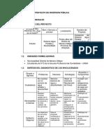 Proyecto de Inversion Pública (2)