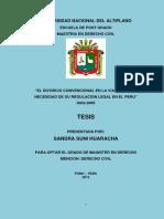 TESIS PERUANA2