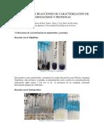 Informe de Proteinas