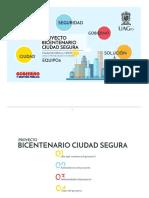 Proyecto Bicentenario Ciudad Segura