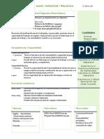 Cv Modelo Competencias (1)