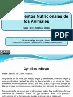 requerimientosnutricionalesdelosbovinos-120103161049-phpapp01