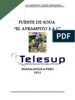 53635803 Plan de Negocio Fuente de Soda Correcion 2011