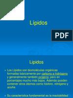 11_Lipidos