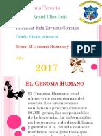 El Genoma Humano y La Clonancion