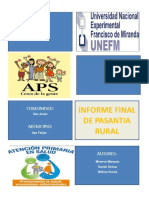Informe Final de Aps