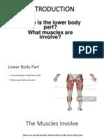 G4-Lower Body Exercise