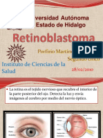 retinoblastoma-100228185627-phpapp01