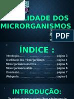 A Utilidade Dos Microrganismos