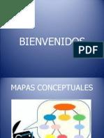 MAPAS CONCEPTUALES (2)