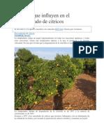 Factores Que Influyen en El Desverdizado de Citricos