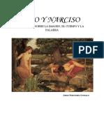 Eco y Narciso Estudios Sobre La Imag