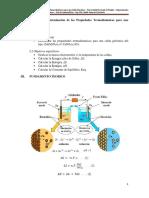 P12 Determinación de Las Propiedades Termodinámicas de Una Celda Galvánica
