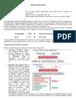 ANALISI D GASES.pdf