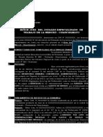 modelo demanda subsidio.docx