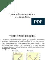 Termogenese