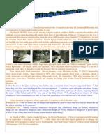 04 Newsletter 1