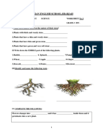 Evs Plant Parts