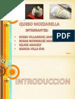 Exposicion Queso Mozzarella