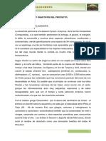 La Alcachofa( Formulacion de Proyectos9