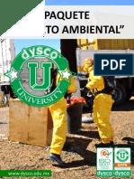 P - Experto Ambiental
