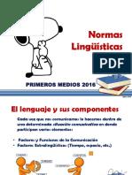 7 Normas Lingüísticas 2016