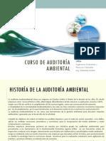 Auditoria Ambiental 2017 I