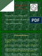13.Oxidación biológica