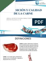 Carne, Composición y Calidad