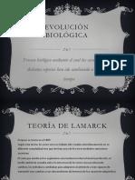 evolucin-140406142000-phpapp02