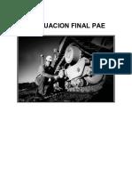 Balotario Evaluación Final Pae 2012