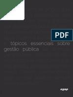 2016-eBOOK-tópicos-essenciais-sobre-gestao-publica.pdf