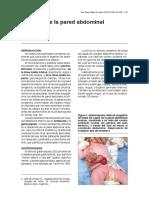 03 defectos-pared-abdominal 258