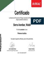 Constancia Primeros Auxilios Sierra Aranibar