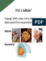 culture   ethnocentrism  reduced