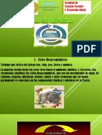 Ciclos Biogeoquimicos Power