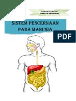 312982067-Lkpd-Sistem-Pencernaan.docx