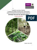 4151Estrategia Nacional de Agrosilvicultura.pdf