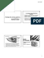 Alimentação e digestão em vertebrados 2016 (1).pdf