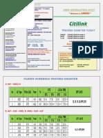 CIS TRAVIRA-2.pdf