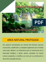 Áreas-Naturales-Protegidas.pptx