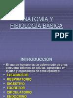 +INTRODUCCION ANATOMÍA Y FISIOLOGÍA BÁSICA (1).ppt