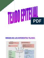 Tejid Epitelial 2017-18