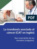 cat patient info spanish