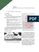 bloque-1-cap-5-tema-5.-fisiologia-hepatica.pdf