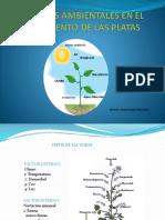 Factores Ambientales en El Crecimiento de Las Platas