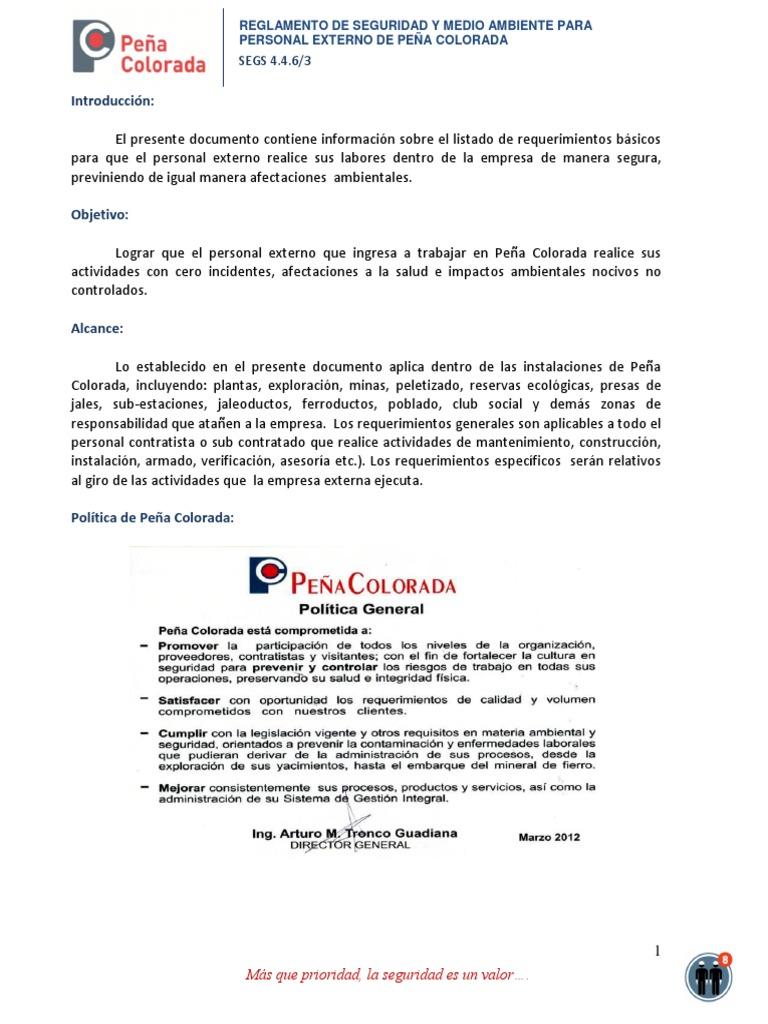 08 Reglamento de Seguridad y Medio Ambiente Para Personal Externo de ...